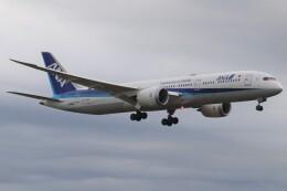 BOEING737MAX-8さんが、成田国際空港で撮影した全日空 787-9の航空フォト(飛行機 写真・画像)