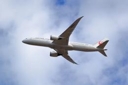 TAKAHIDEさんが、成田国際空港で撮影した日本航空 787-9の航空フォト(飛行機 写真・画像)