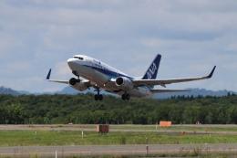 磐城さんが、釧路空港で撮影した全日空 737-781の航空フォト(飛行機 写真・画像)