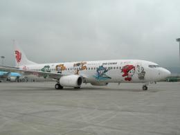 磐城さんが、大連周水子国際空港で撮影した中国国際航空 737-86Nの航空フォト(飛行機 写真・画像)