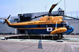 パール大山さんが、成田国際空港で撮影した海上保安庁 S-62Aの航空フォト(飛行機 写真・画像)