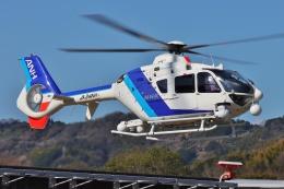 ブルーさんさんが、静岡ヘリポートで撮影したオールニッポンヘリコプター EC135T2の航空フォト(飛行機 写真・画像)