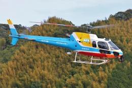 ブルーさんさんが、静岡ヘリポートで撮影した中日本航空 AS350B2 Ecureuilの航空フォト(飛行機 写真・画像)