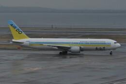 kumagorouさんが、羽田空港で撮影したAIR DO 767-33A/ERの航空フォト(飛行機 写真・画像)
