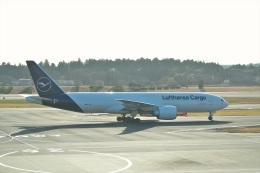サイパンだ!さんが、成田国際空港で撮影した深圳航空 737-87Lの航空フォト(飛行機 写真・画像)