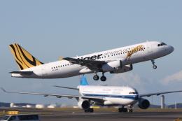 kinsanさんが、シドニー国際空港で撮影したタイガー・エアウェイズ・オーストラリア A320-232の航空フォト(飛行機 写真・画像)