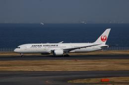 ゆーすきんさんが、羽田空港で撮影した日本航空 787-9の航空フォト(飛行機 写真・画像)
