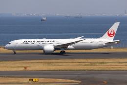 やつはしさんが、羽田空港で撮影した日本航空 787-9の航空フォト(飛行機 写真・画像)