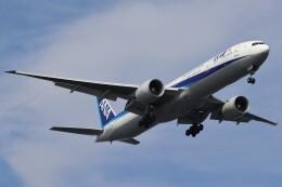 BOEING737MAX-8さんが、羽田空港で撮影した全日空 777-381/ERの航空フォト(飛行機 写真・画像)