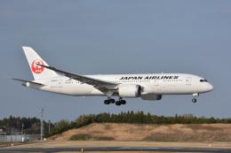 航空フォト:JA842J 日本航空 787-8 Dreamliner