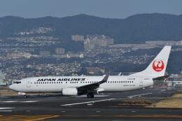 航空フォト:JA331J 日本航空 737-800