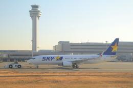 しかばねさんが、羽田空港で撮影したスカイマーク 737-8ALの航空フォト(飛行機 写真・画像)