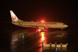 ニヤンさんが、岡山空港で撮影した日本航空 737-846の航空フォト(飛行機 写真・画像)