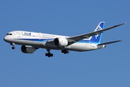 とらとらさんが、羽田空港で撮影した全日空 787-9の航空フォト(飛行機 写真・画像)