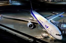 とらとらさんが、羽田空港で撮影した全日空 777-381/ERの航空フォト(飛行機 写真・画像)