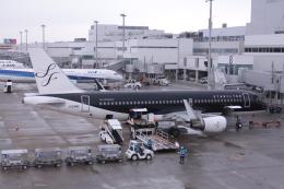 Mr.boneさんが、福岡空港で撮影したスターフライヤー A320-214の航空フォト(飛行機 写真・画像)