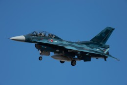 Takeshi90ssさんが、岐阜基地で撮影した航空自衛隊 F-2Bの航空フォト(飛行機 写真・画像)