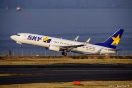 ぱん_くまさんが、羽田空港で撮影したスカイマーク 737-81Dの航空フォト(飛行機 写真・画像)