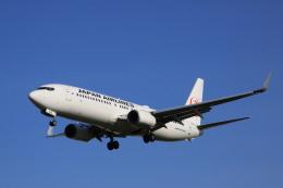 航空フォト:JA319J 日本航空 737-800