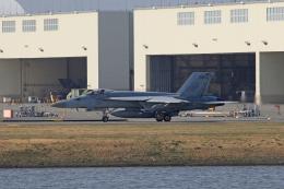 tsubameさんが、岩国空港で撮影したアメリカ海軍 F/A-18C Hornetの航空フォト(飛行機 写真・画像)