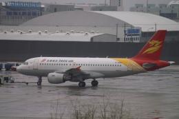 磐城さんが、上海浦東国際空港で撮影した金鹿航空 A319-115の航空フォト(飛行機 写真・画像)