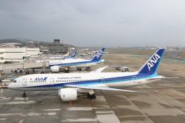 安芸あすかさんが、福岡空港で撮影した全日空 787-8 Dreamlinerの航空フォト(飛行機 写真・画像)