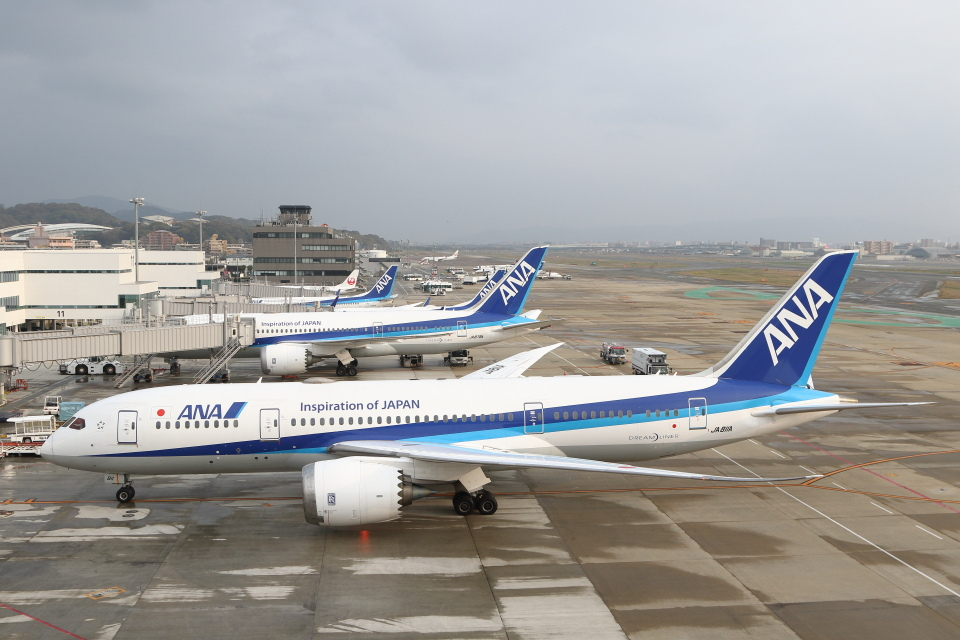 安芸あすかさんの全日空 Boeing 787-8 Dreamliner (JA811A) 航空フォト