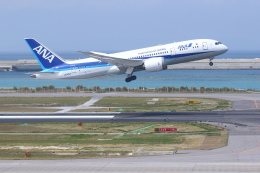 安芸あすかさんが、那覇空港で撮影した全日空 787-8 Dreamlinerの航空フォト(飛行機 写真・画像)