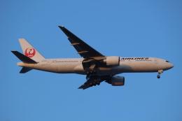 デルさんが、羽田空港で撮影した日本航空 777-246/ERの航空フォト(飛行機 写真・画像)