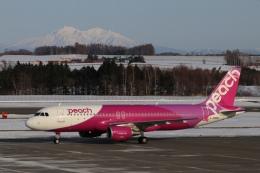 磐城さんが、女満別空港で撮影したピーチ A320-214の航空フォト(飛行機 写真・画像)