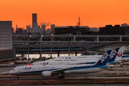 SGR RT 改さんが、羽田空港で撮影した全日空 787-9の航空フォト(飛行機 写真・画像)