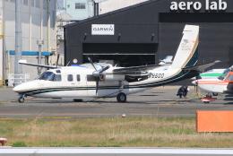 キイロイトリさんが、八尾空港で撮影した日本団体所有 695 Jetprop 980の航空フォト(飛行機 写真・画像)