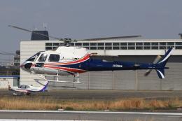 キイロイトリさんが、八尾空港で撮影したノエビア AS350B3 Ecureuilの航空フォト(飛行機 写真・画像)