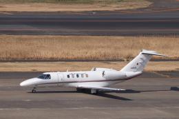KAZFLYERさんが、羽田空港で撮影した国土交通省 航空局 525C Citation CJ4の航空フォト(飛行機 写真・画像)