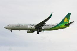 かっちゃん✈︎さんが、成田国際空港で撮影した春秋航空日本 737-8ALの航空フォト(飛行機 写真・画像)