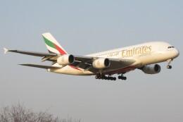 BOEING737MAX-8さんが、成田国際空港で撮影したエミレーツ航空 A380-861の航空フォト(飛行機 写真・画像)