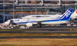 mich_stoneさんが、羽田空港で撮影した全日空 787-9の航空フォト(飛行機 写真・画像)