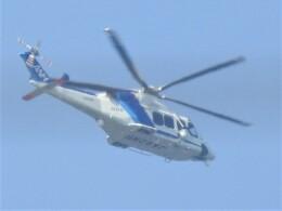いねねさんが、名古屋飛行場で撮影したオールニッポンヘリコプター AW139の航空フォト(飛行機 写真・画像)