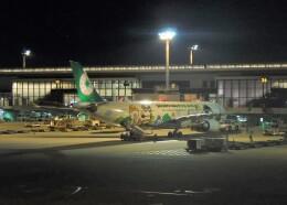 不揃いさんが、成田国際空港で撮影したエバー航空 A330-302Xの航空フォト(飛行機 写真・画像)