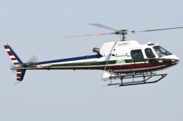 ほてるやんきーさんが、八尾空港で撮影したエクセル航空 AS350B2 Ecureuilの航空フォト(飛行機 写真・画像)