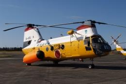 木人さんが、浜松基地で撮影した航空自衛隊 KV-107IIA-5の航空フォト(飛行機 写真・画像)