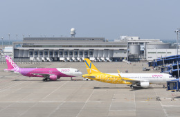 tamtam3839さんが、中部国際空港で撮影したピーチ A320-214の航空フォト(飛行機 写真・画像)