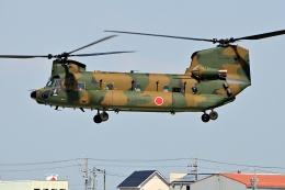 LUCHObyNOSAさんが、明野駐屯地で撮影した陸上自衛隊 CH-47JAの航空フォト(飛行機 写真・画像)