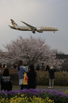 flyskyさんが、成田国際空港で撮影したエティハド航空 787-9の航空フォト(飛行機 写真・画像)
