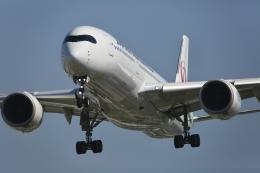 kaltさんが、伊丹空港で撮影した日本航空 A350-941の航空フォト(飛行機 写真・画像)