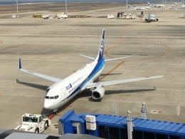 737dolphinさんが、中部国際空港で撮影した全日空 737-881の航空フォト(飛行機 写真・画像)