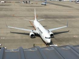 737dolphinさんが、中部国際空港で撮影した日本航空 737-846の航空フォト(飛行機 写真・画像)
