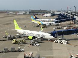 737dolphinさんが、中部国際空港で撮影したソラシド エア 737-81Dの航空フォト(飛行機 写真・画像)