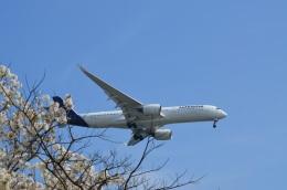 hirokongさんが、羽田空港で撮影したルフトハンザドイツ航空 A350-941の航空フォト(飛行機 写真・画像)