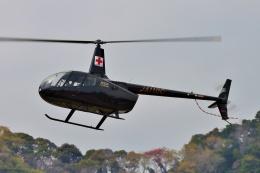 ブルーさんさんが、静岡ヘリポートで撮影した大阪航空 R66の航空フォト(飛行機 写真・画像)